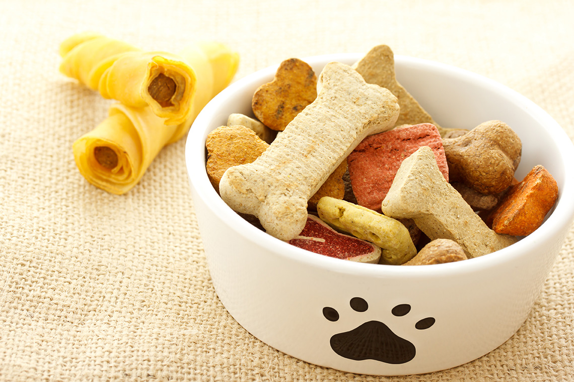 Pet treats in a dish